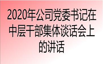 2020年公司党委书记在中层干部集体谈话会上的讲话
