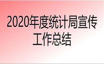 2020年度统计局宣传工作总结