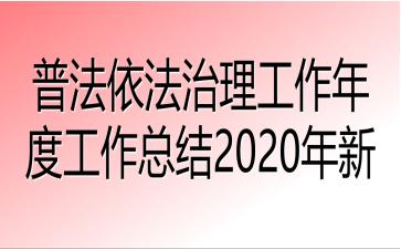 普法依法治理工作年度工作总结2020年新