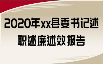 2020年xx县委书记述职述廉述效报告