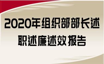 2020年组织部部长述职述廉述效报告