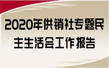 2020年供销社专题民主生活会工作报告