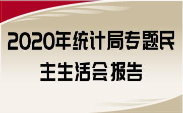 2020年统计局专题民主生活会报告
