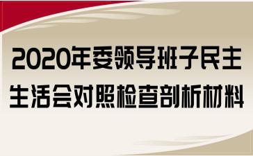 2020年委领导班子民主生活会对照检查剖析材料