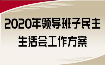 2020年领导班子民主生活会工作方案