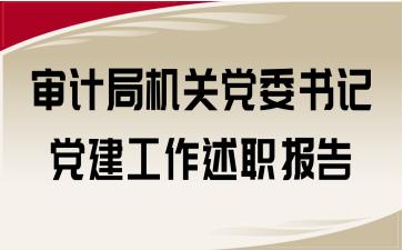 审计局机关党委书记党建工作述职报告