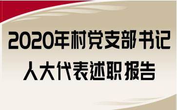 2020年村党支部书记人大代表述职报告