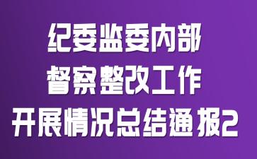 纪委监委内部督察整改工作开展情况总结通报2