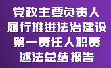 党政主要负责人履行推进法治建设第一责任人职责述法总结报告