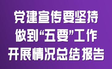 """党建宣传要坚持做到""""五要""""工作开展情况总结报告"""
