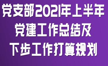 党支部2021年上半年党建工作总结及下步工作打算规划